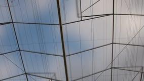 Vue de vers le haut par le dessus du constructin de maison verte d'industrie de la serre chaude d'industrie Bâtiment d'industrie banque de vidéos