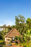 Vue de verticale de Shack de jungle Image stock