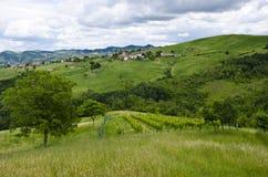 Vue de vignoble et de village Photos libres de droits