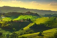 Vue de vignobles de Langhe, Castiglione Falletto et La Morra, Piedmo image stock