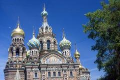 Vue de ville de St Petersburg, Russie Église de sauveur sur le sang renversé Images stock