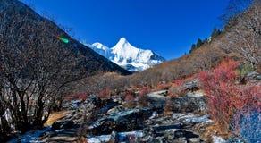 Vue de Yading, le Qinghai 3 Image stock