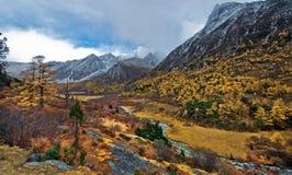 Vue de Yading, le Qinghai Images libres de droits