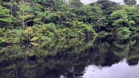 Vue des arbres passant par à la rivière clips vidéos