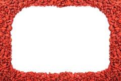 Vue des baies sèches rouges de goji Photos stock