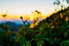 Vue des crêtes de montagne Coucher du soleil en Thaïlande photographie stock libre de droits