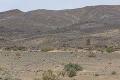 Vue des déserts et des montagnes images libres de droits