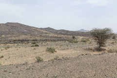 Vue des déserts et des montagnes images stock