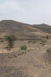 Vue des déserts et des montagnes photos stock