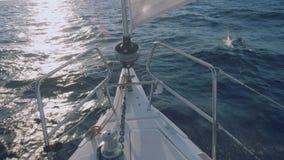 Vue des dauphins nageant devant l'arc du yacht pendant le coucher du soleil clips vidéos