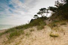 Vue des dunes à la mer baltique Photo stock