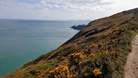 Vue des falaises avec le phare à l'arrière-plan photographie stock libre de droits