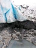 Vue des feuilles et des glaciers de glace de l'Alaska Photo stock