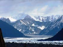 Vue des feuilles et des glaciers de glace de l'Alaska Photo libre de droits
