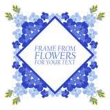 Vue des fleurs pour le texte Le bleu fleurit le delphinium illustration de vecteur