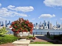Vue des fleurs rouges et de l'horizon de New York City Photos stock