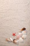 Vue des interpréteurs de commandes interactifs et des étoiles de mer de mer sur le sable Photos libres de droits