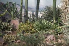 Vue des jardins de Kew Photographie stock