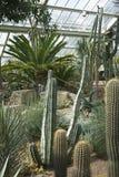 Vue des jardins de Kew Photographie stock libre de droits