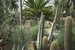 Vue des jardins de Kew Photos stock