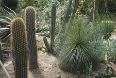 Vue des jardins de Kew Photos libres de droits