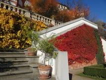Vue des jardins sous le château de Prague Images stock