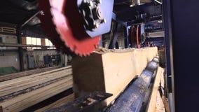 Vue des machines de coupe à la scierie banque de vidéos