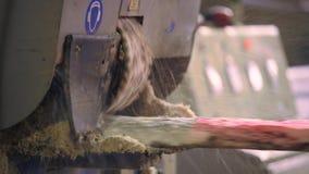 Vue des machines de coupe à la scierie clips vidéos