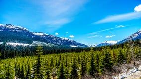 Vue des montagnes de côte couvertes par neige le long de la route 99, également appelée la route de lac Duffey Photo stock