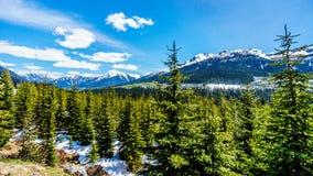 Vue des montagnes de côte couvertes par neige le long de la route 99, également appelée la route de lac Duffey Photo libre de droits