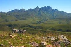 Vue des montagnes de Cockscomb Photographie stock libre de droits
