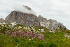 Vue des montagnes de dolomites Photo libre de droits