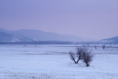 Vue des montagnes de l'hiver Image libre de droits