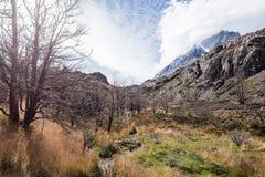 Vue des montagnes, grand côté de Paine du parc national de Torres del Paine au Chili Photos libres de droits