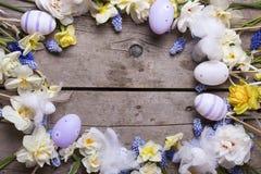 Vue des oeufs de pâques et le narcisse et le mus colorés de ressort Photo stock