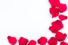 Vue des pétales de rose artificiels Photo stock