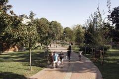 Vue des personnes marchant au parc Photo stock