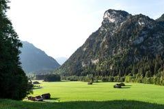 Vue des prés alpins bien-toilettés avec des annexes contre le contexte des montagnes images libres de droits