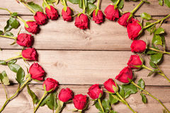 Vue des roses fraîches Photo libre de droits