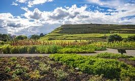 Vue des ruines antiques d'Inca de Pumapungo Images stock