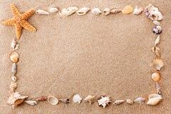 Vue des seashells photos libres de droits