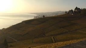 Vue des terrasses de Lavaux, lac Léman, Suisse image libre de droits
