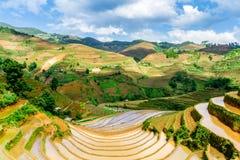 Vue des terrasses de riz vues d'une crête de montagne Image libre de droits