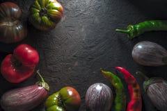 Vue des tomates, de l'aubergine et du piment multicolores sur un espace libre gris de table Images stock