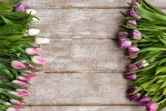 Vue des tulipes roses Fond floral Photo stock