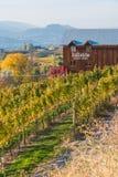 Vue des vignes et de l'établissement vinicole de Hillside sur le banc de Naramata, en automne photo stock