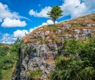 Vue dramatique de paysage à la gorge de cheddar, Somerset, Angleterre images libres de droits