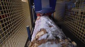 Vue du bois de construction scié prêt pour couper à la scierie banque de vidéos