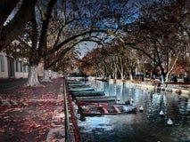 Vue du canal du Vassè près des belles intrigues amoureuses de DES de Pont à Annecy, France photo stock
