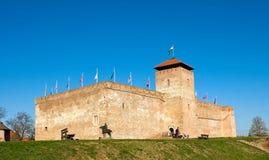 Vue du château de Gyula Photographie stock